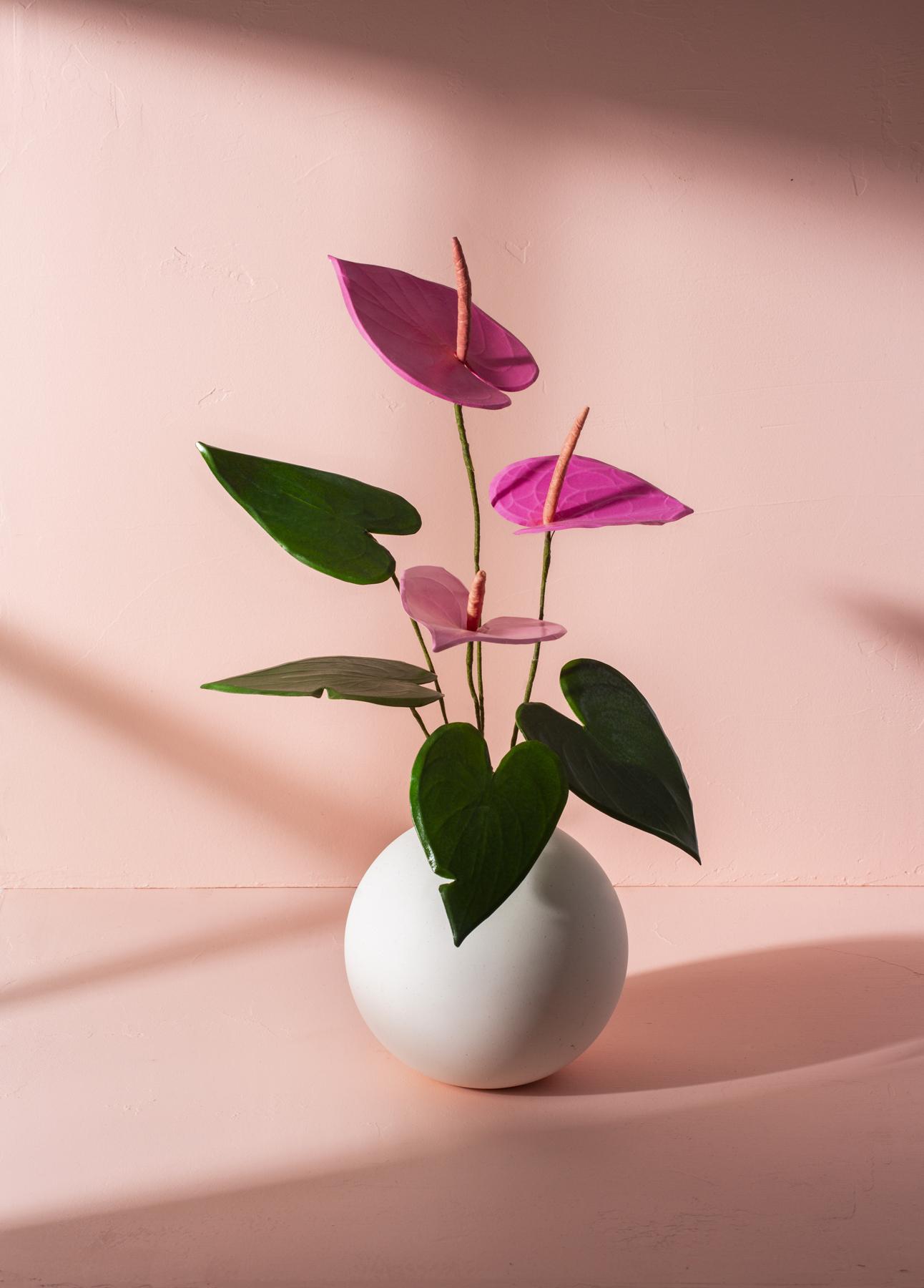 Paper Anthurium, Naomi Julia Satake